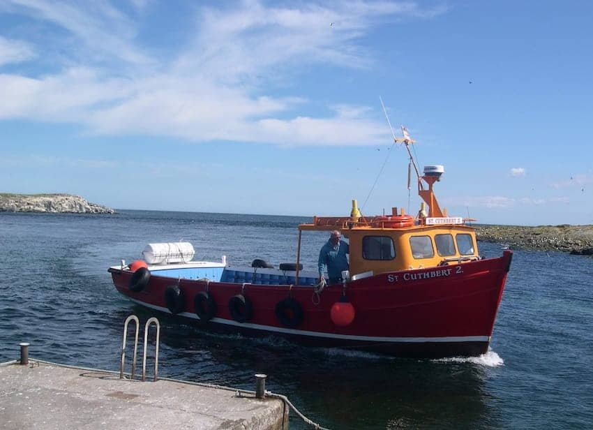 Find British - Farne Island Ferry