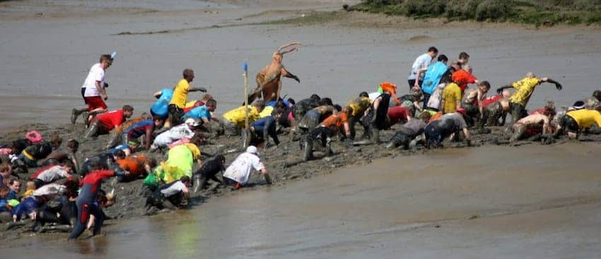Find British - Maldon Mud Race