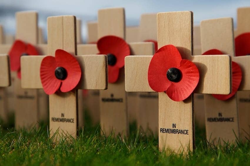 Find British - Remembrance Day