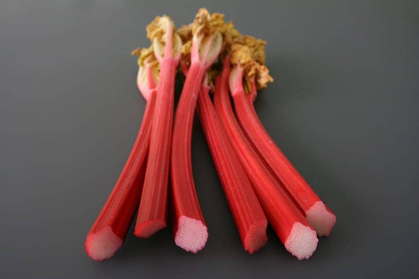 Find British - Yorkshire Rhubarb